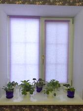 Окна с наружной ламинацией и шпросами в коттедже, г. Богодухов — Новая Эра XXI