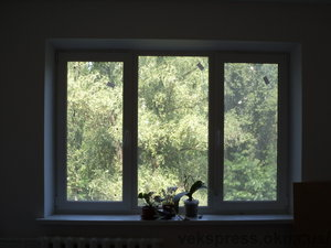 Тричастинне вікно в зал — Вікна Експрес