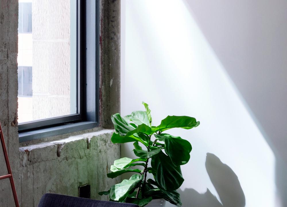 Как правильно выбрать окно