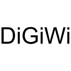 DigiWi 2019