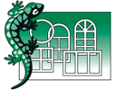 Salamander 2D