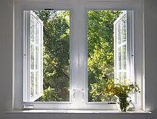 Металлопластиковые окна (с Петрушки)